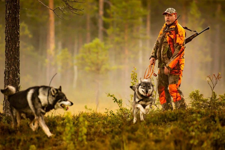 hunter and mammals